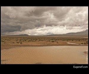 Arequipa Road 43
