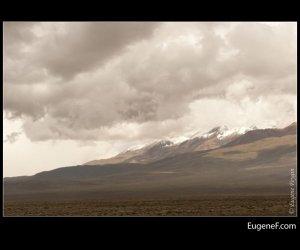 Arequipa Road 44