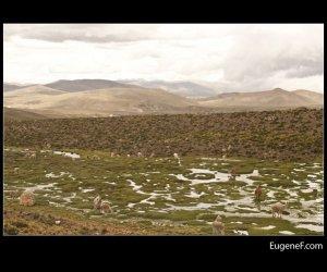 Caylloma Province Landscape 10