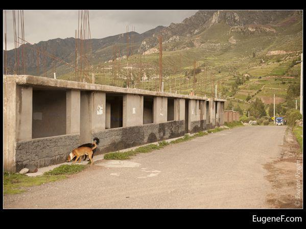 Chivay Landscape 09