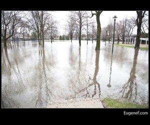 Des Plaines Flooding 03