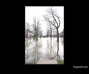 Des Plaines Flooding 04
