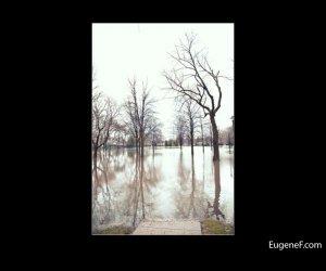 Des Plaines Flooding 05