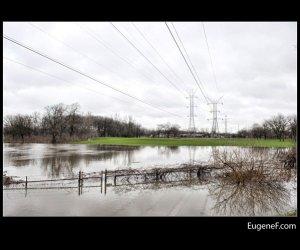 Des Plaines Flooding 06