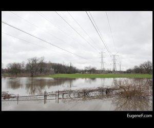 Des Plaines Flooding 07