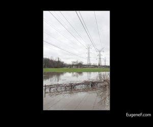 Des Plaines Flooding 08