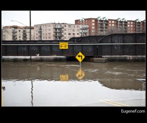 Des Plaines Flooding 10