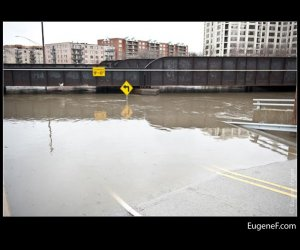 Des Plaines Flooding 11