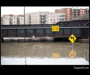 Des Plaines Flooding 13