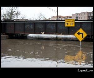 Des Plaines Flooding 19