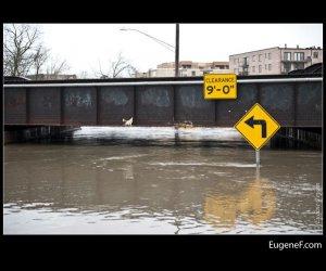 Des Plaines Flooding 20