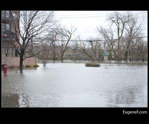 Des Plaines Flooding 28