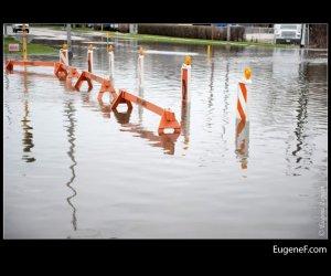 Des Plaines Flooding 39