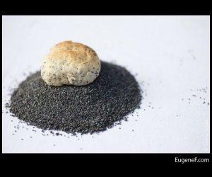 closeup poppy seed cookie