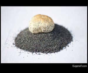 organic poppy seed cookie